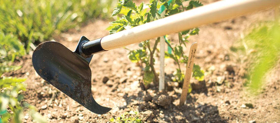 Backyard Design Tools  Landscaping Tools Gardening Equipment & Supplies