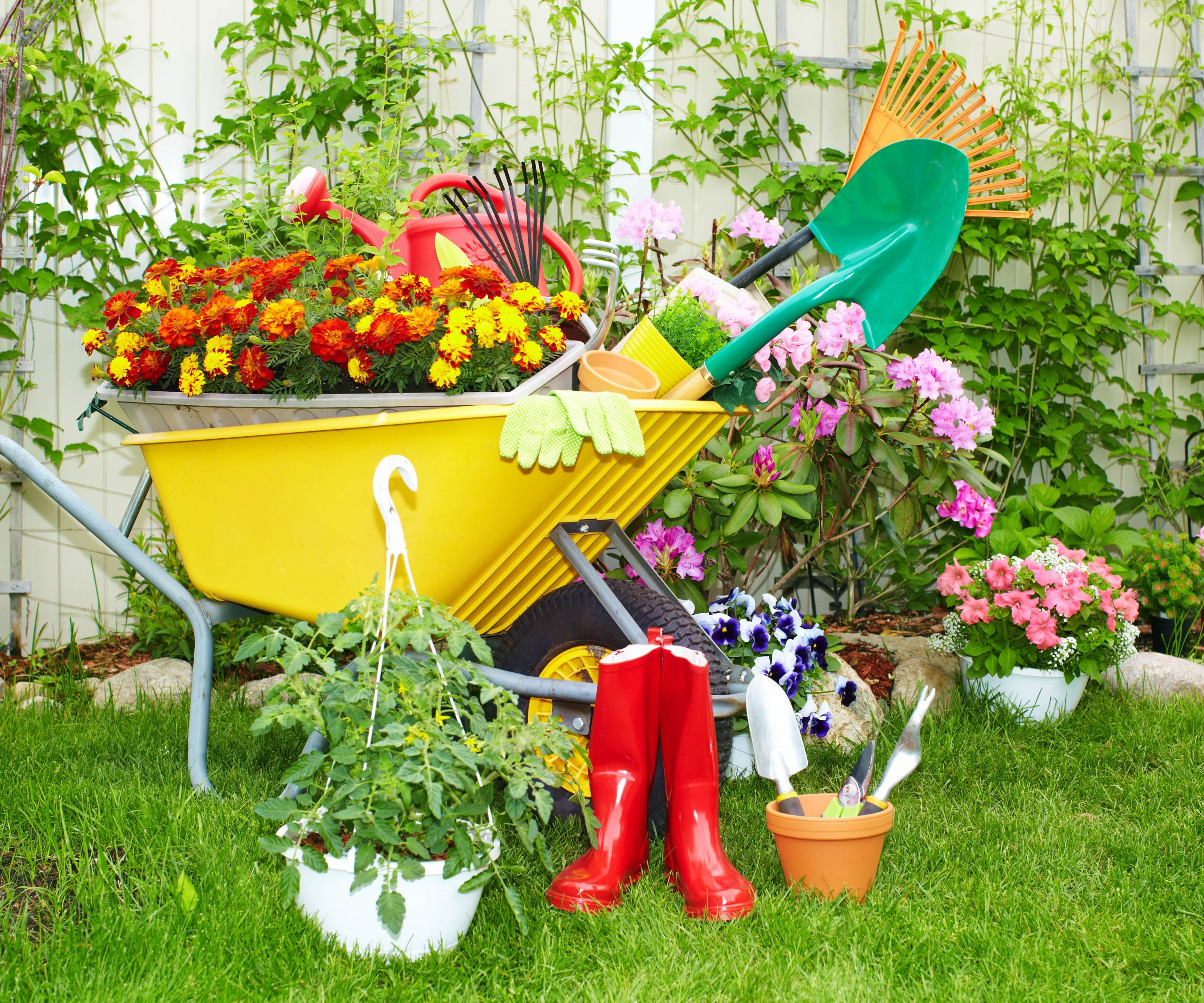 Backyard Design Tools  12 Must Have Tools for a Prize Winning Garden thegoodstuff