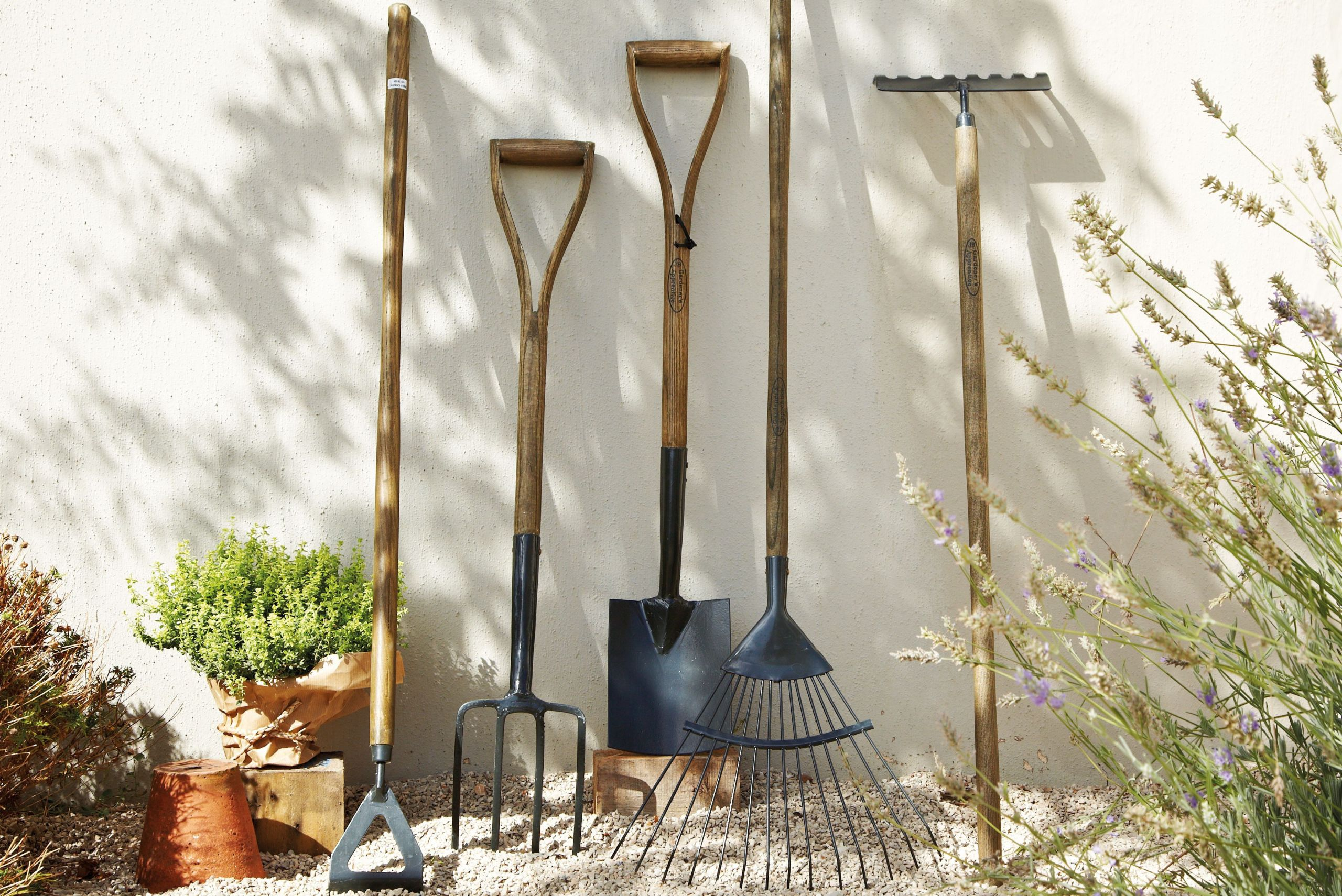 Backyard Design Tools  Building & landscaping tools ing guide