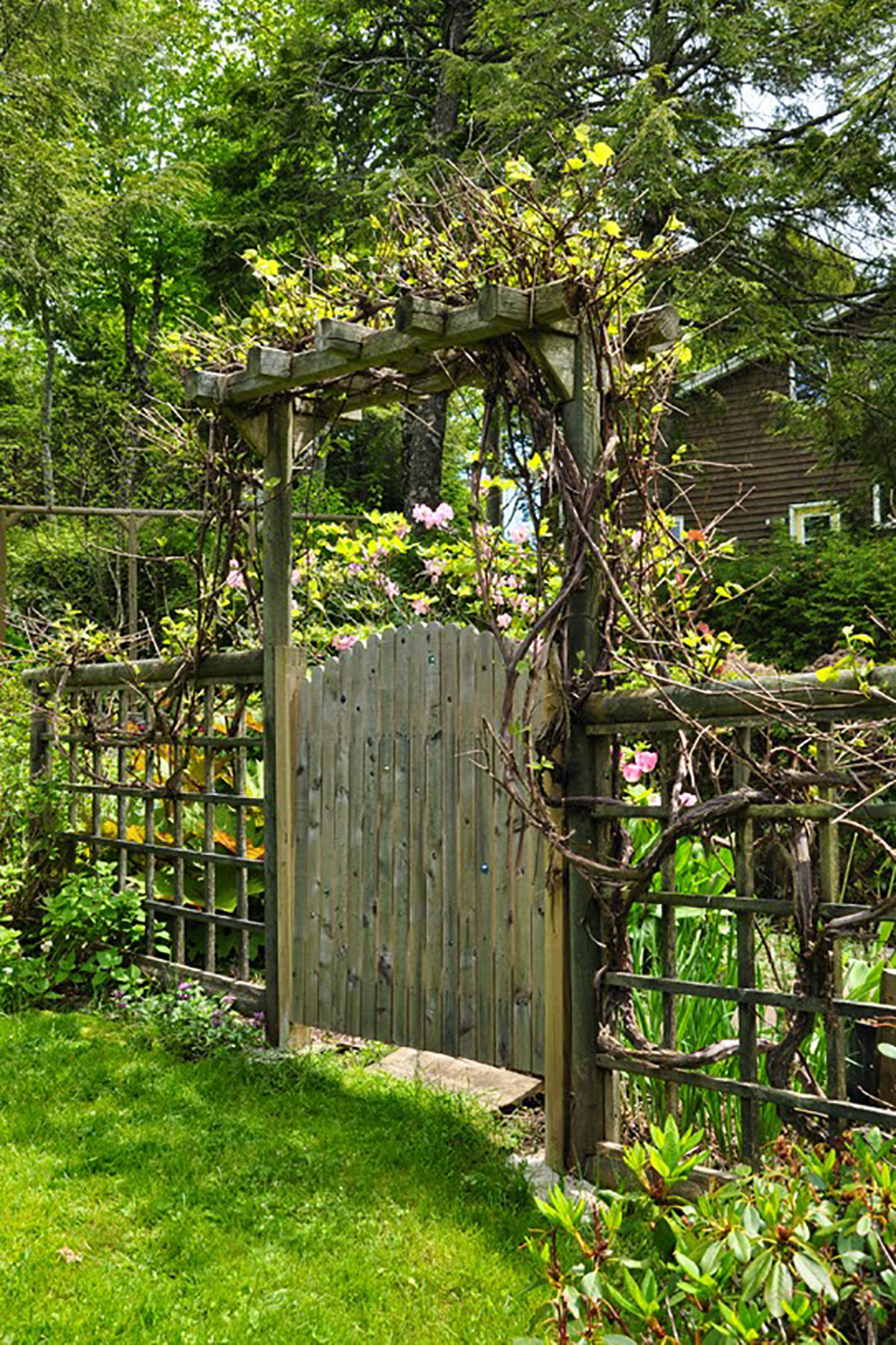 Backyard Fence Door  15 Best Garden Gates Ideas for Beautiful Garden Gates