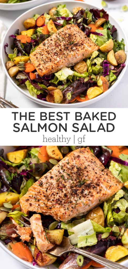 Baked Salmon Salad Recipe  Healthy Baked Salmon Salad Recipe in 2020