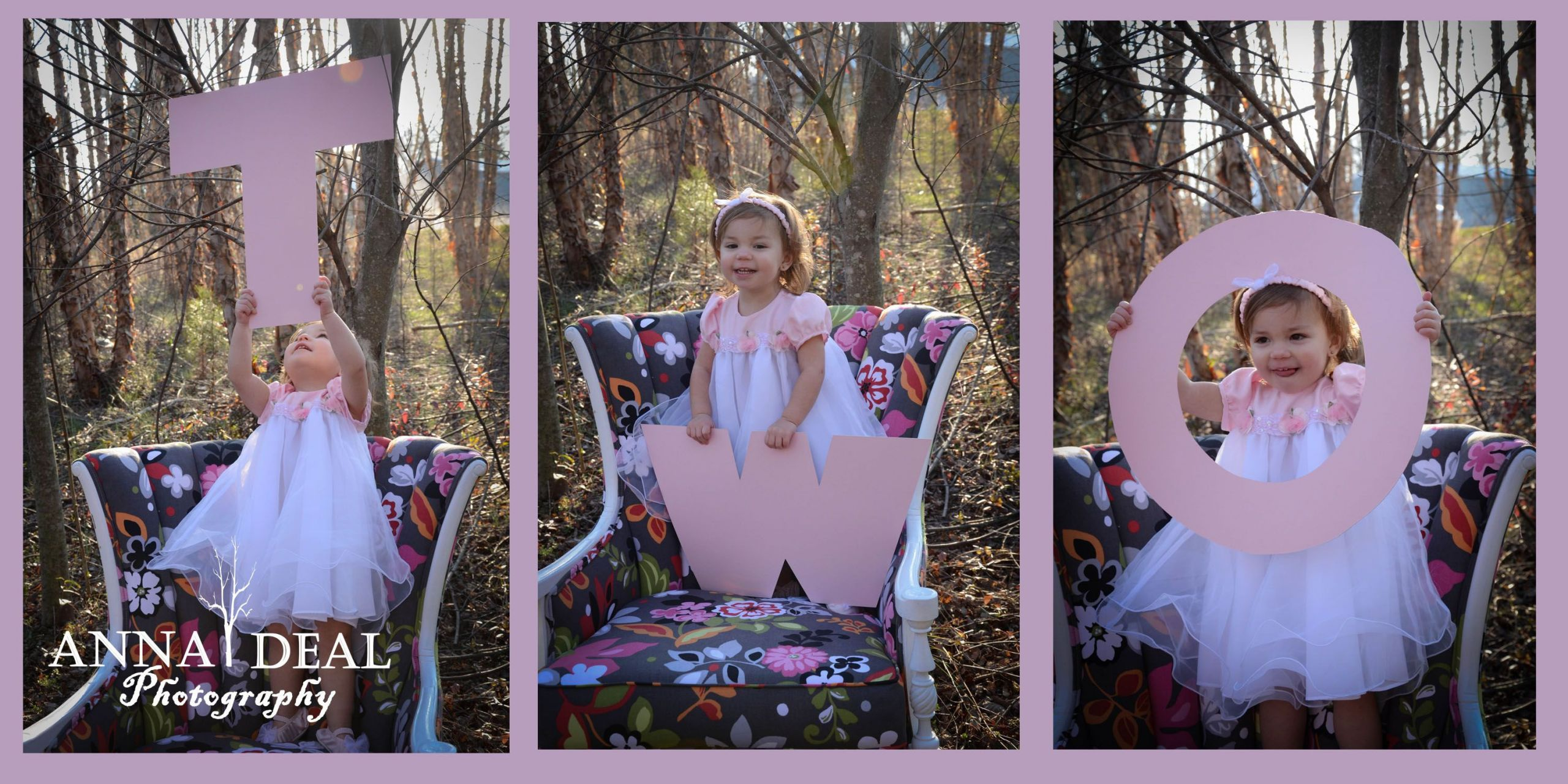 Birthday Party Ideas For 2 Year Girl  Pin by Anna Wiseman on My photography