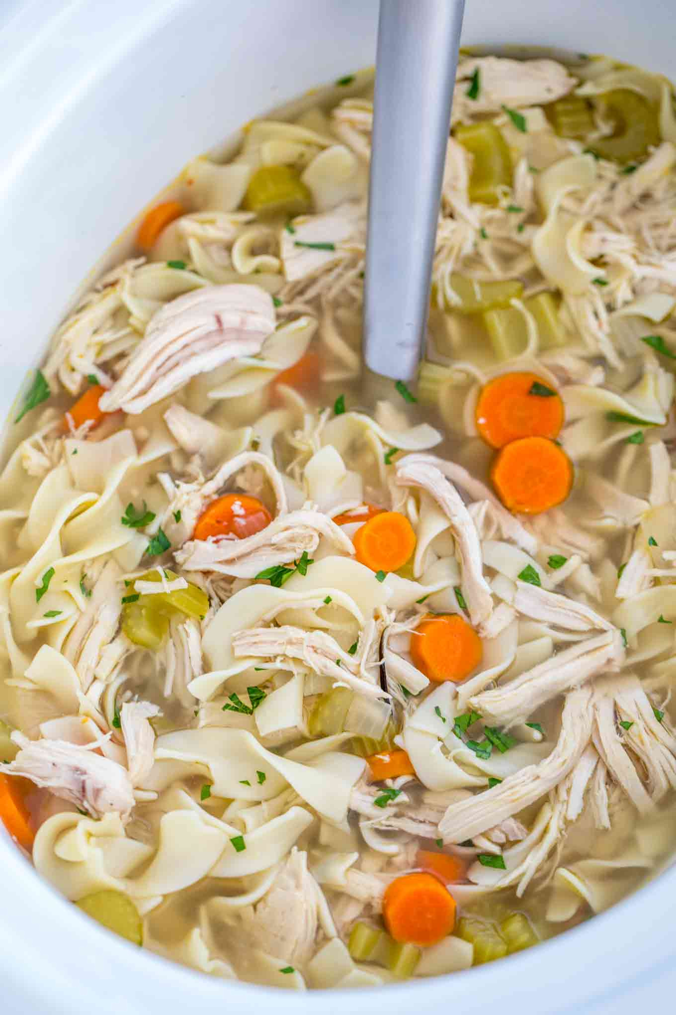 Chicken Noodle Soup In Crock Pot  15 Healthy Crock Pot Soups for Busy Weeknights