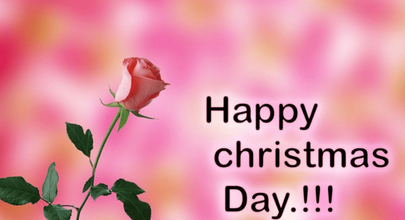 Christmas Day Quotes  Happy Christmas Day Quotes Messages and Wishes