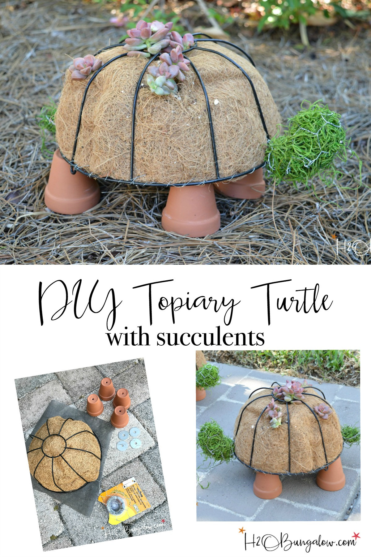 DIY Outdoor Art  How to Make a DIY Turtle Topiary H2OBungalow
