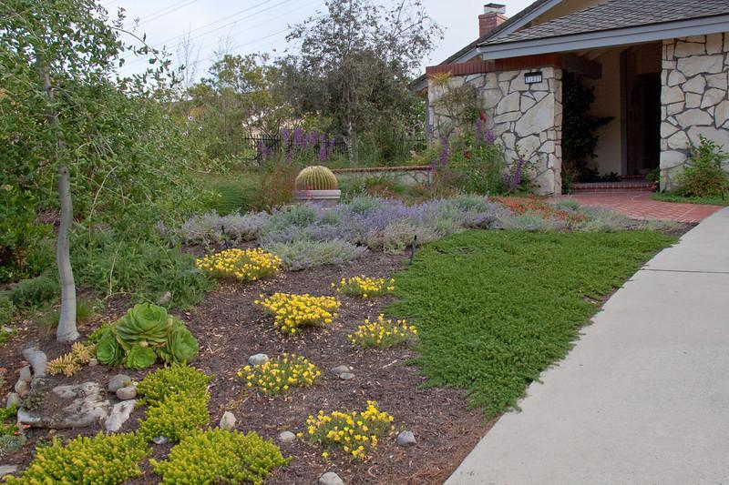 Drought Tolerant Landscape Design  Drought Tolerant Landscape Design Gallery
