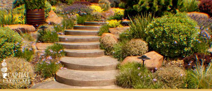 Drought Tolerant Landscape Design  Drought Tolerant Landscape Design Sacramento