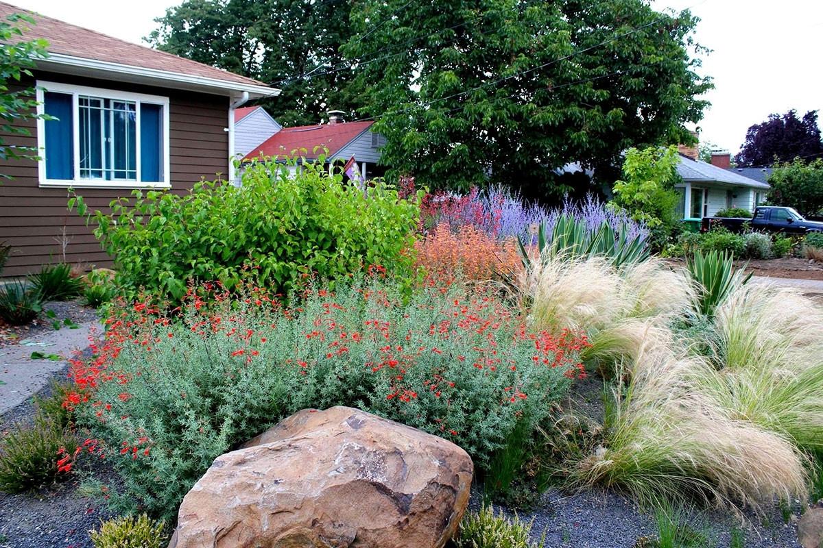 Drought Tolerant Landscape Design  Drought Tolerant Landscape Design – Madison Art Center Design