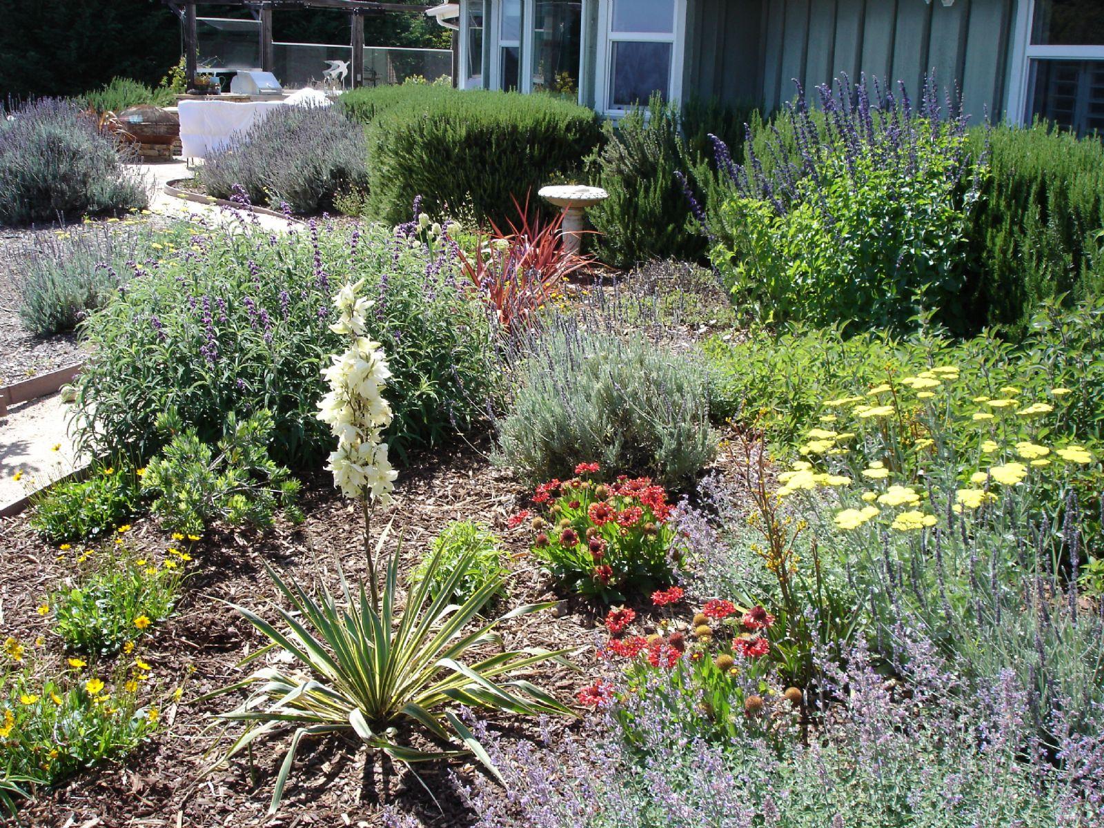 Drought Tolerant Landscape Design  High Quality Drought Landscaping Ideas 9 Drought Tolerant