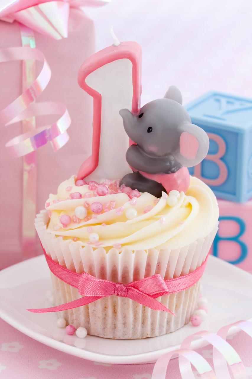 First Birthday Decor  1st Birthday Ideas First Birthday Themes 1st Birthday