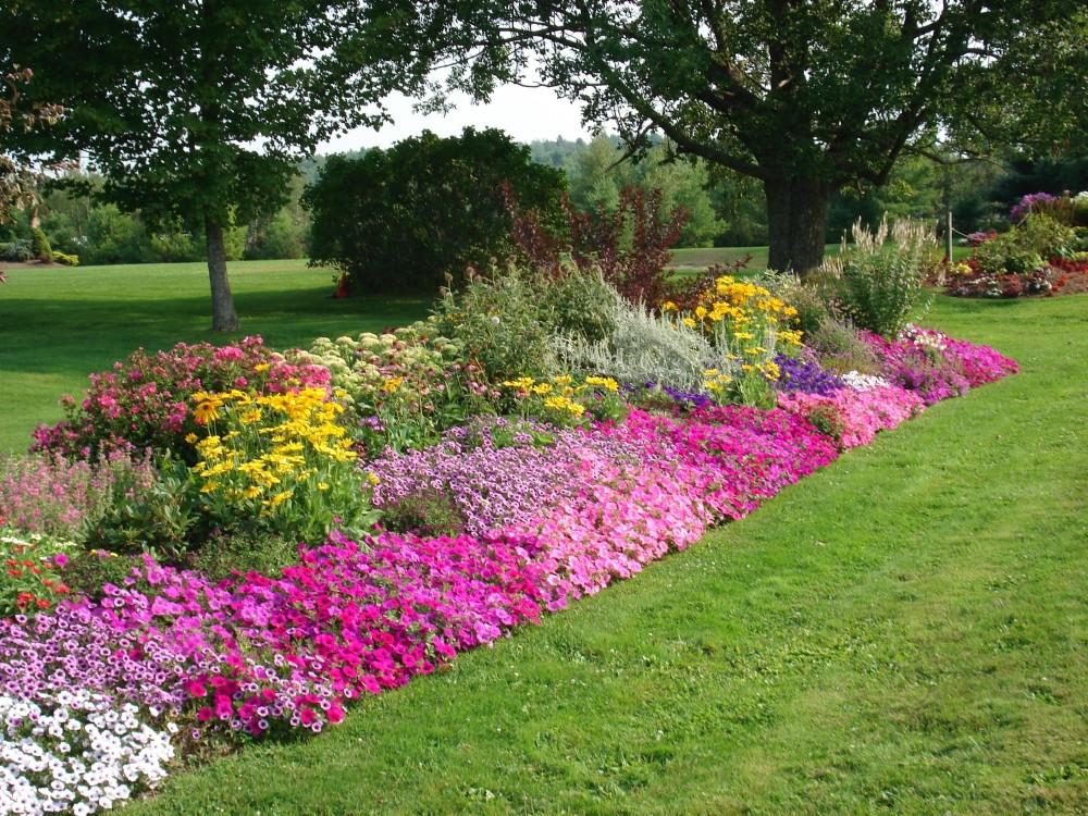Flower Landscape Design  DIY Re do a Tired Flower bed