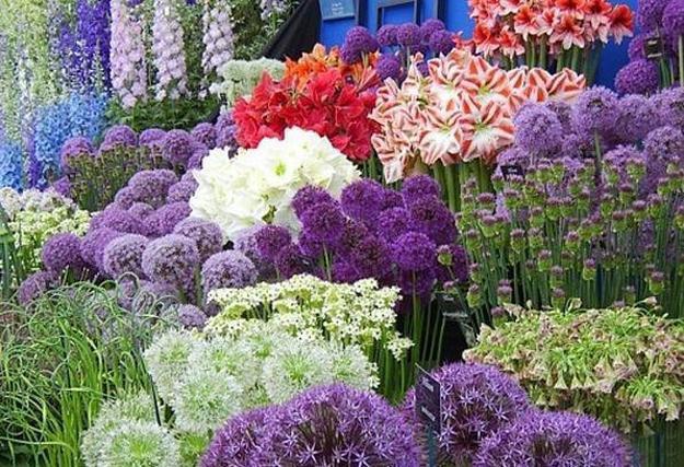 Flower Landscape Design  33 Beautiful Flower Beds Adding Bright Centerpieces to