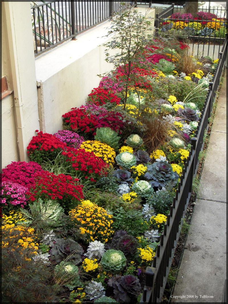 Flower Landscape Design  BLOOM CHICAGO GARDEN LANDSCAPE DESIGN SERVICES
