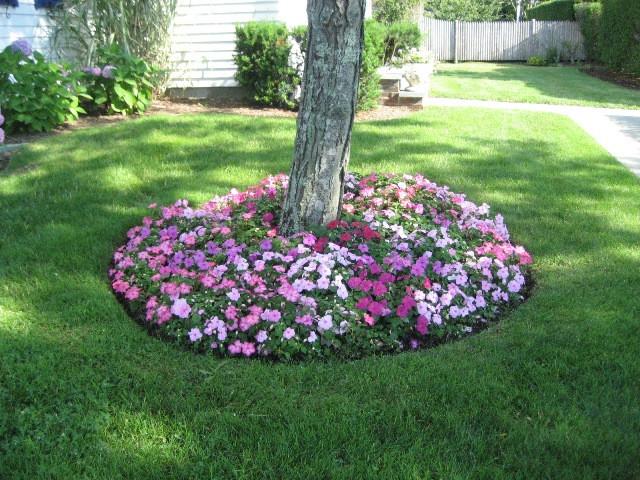 Flower Landscape Design  Landscape Design