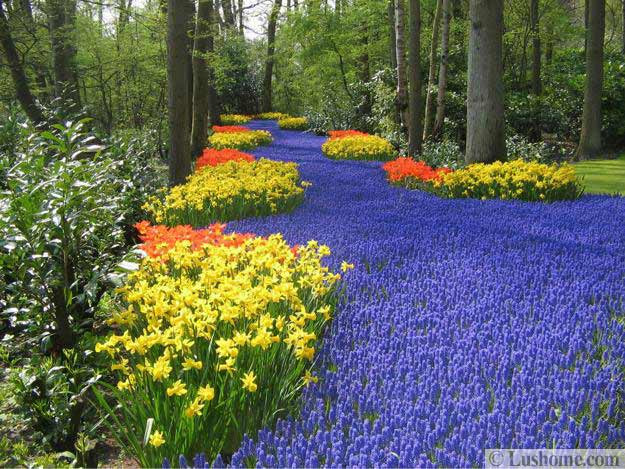 Flower Landscape Design  Colorful Spring Flowers and Yard Landscaping Ideas