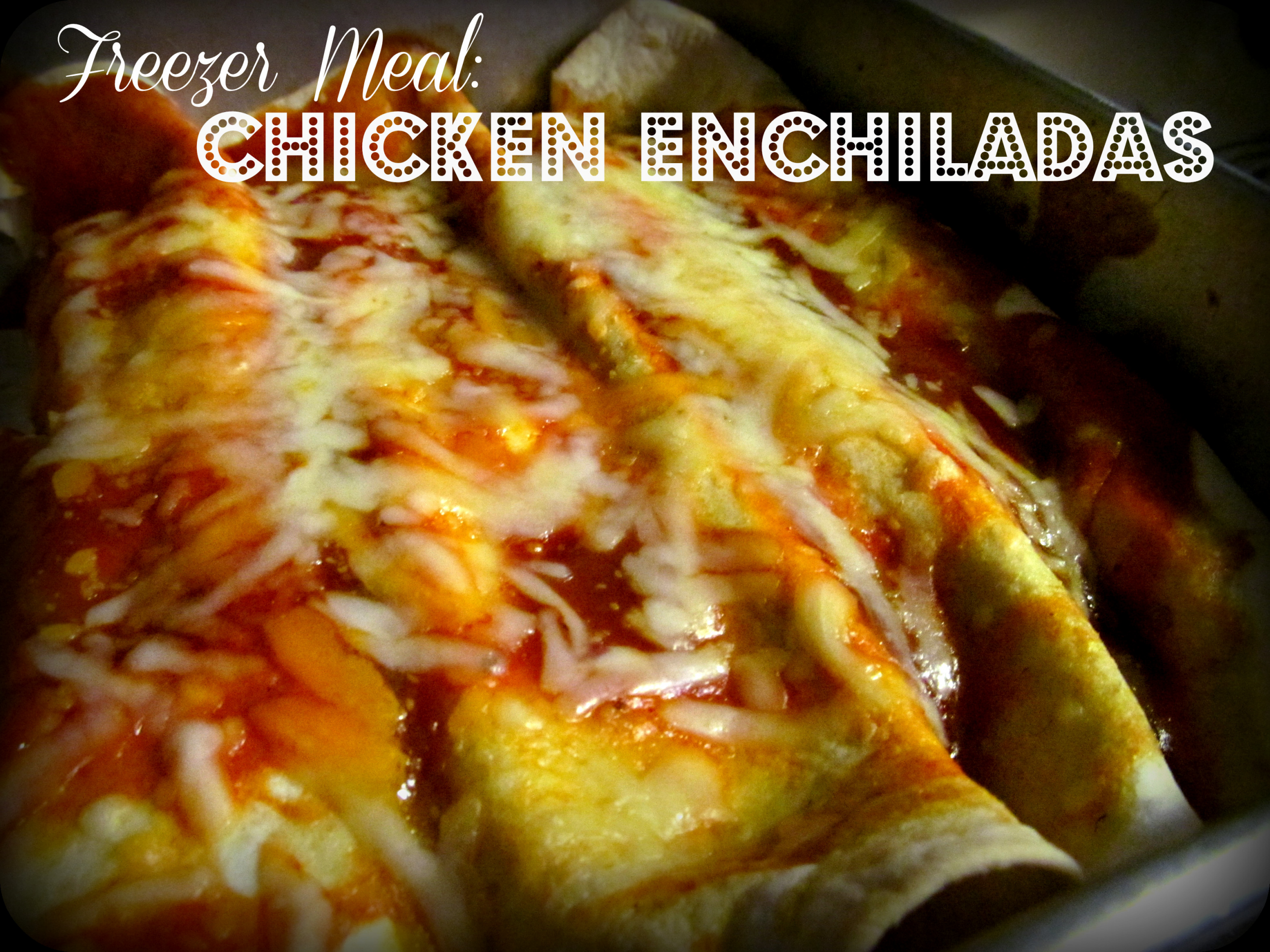 Freezer Chicken Enchiladas  Freezer Chicken Enchiladas