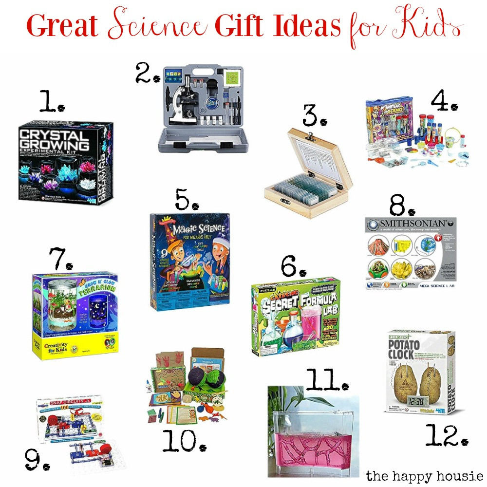 Great Gift Ideas For Kids  Great Science Gift Ideas for Kids