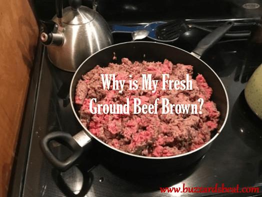 Ground Beef Turns Brown In Freezer  21 Best Ground Beef Turns Brown In Freezer Home Family