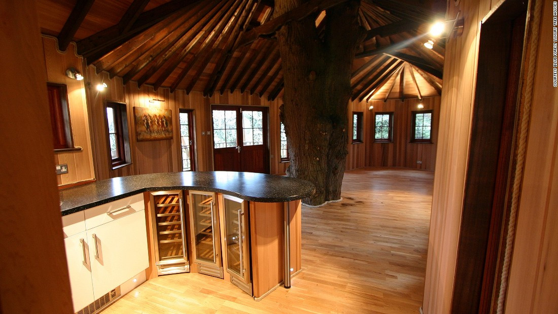 Home For Adults  Is the treehouse the pinnacle of sustainable living CNN
