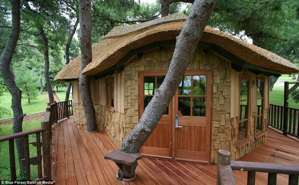 Home For Adults  VWVortex Adult tree houses