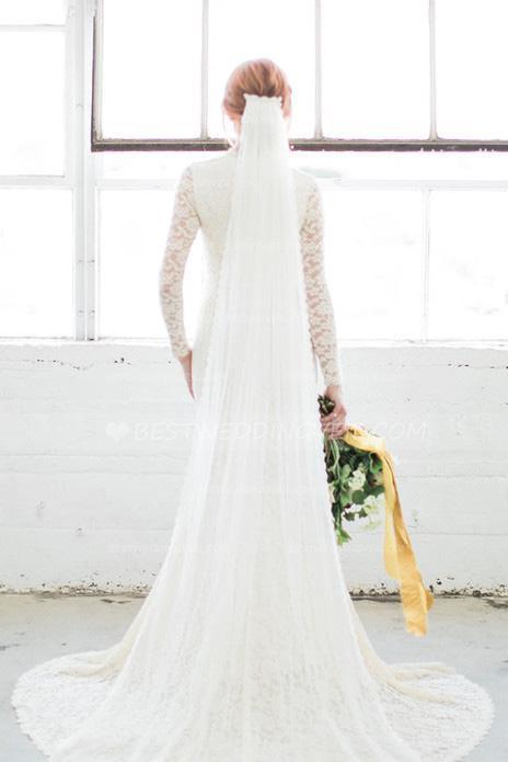 Lace Trim Wedding Veil  Narrow Lace Trim Bridal Long Wedding Veil with b