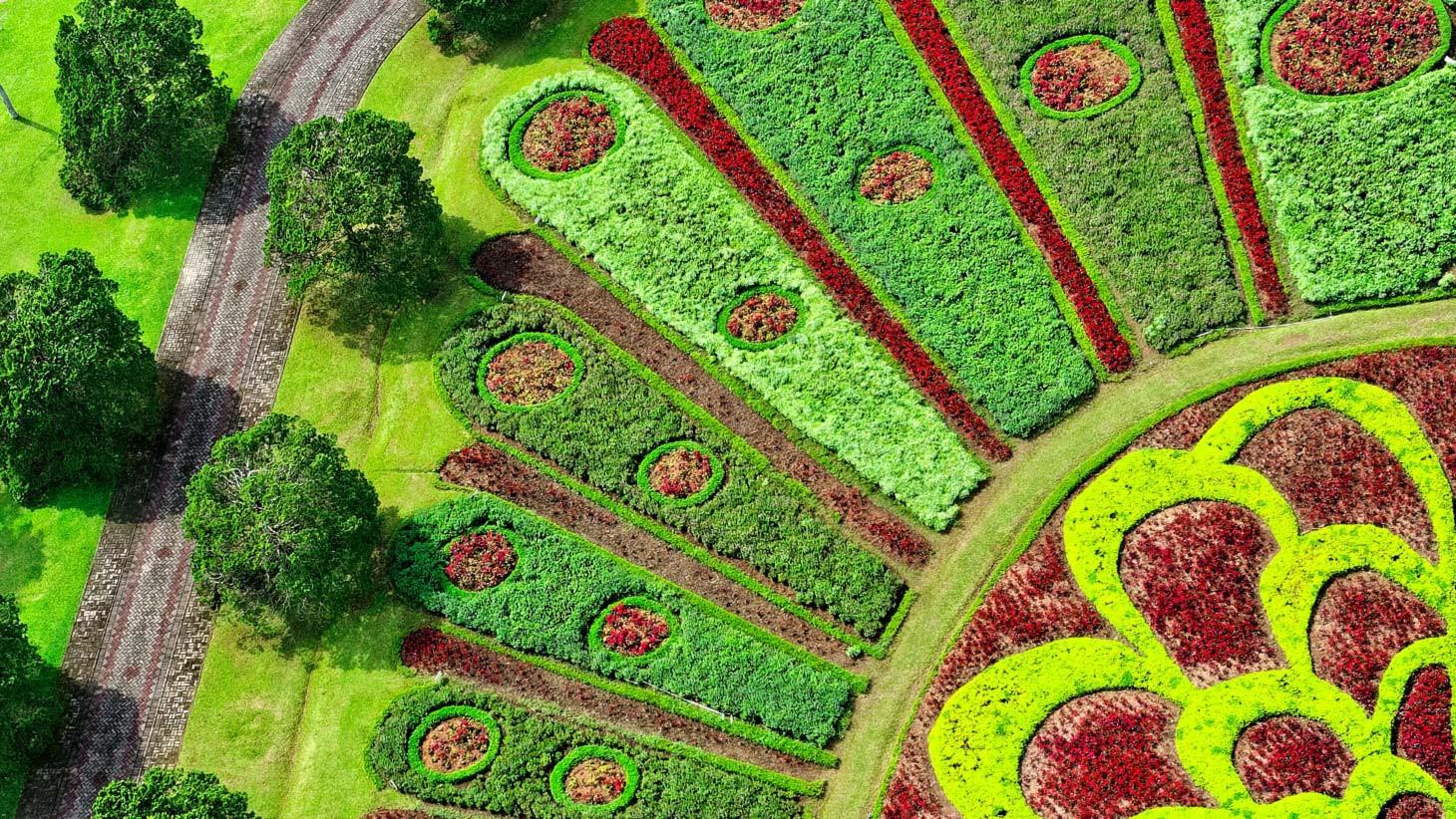Landscape Design Certification  Landscape Design Certificate Emory University