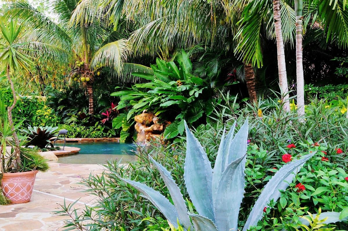 Outdoor Landscape Tropical  Tropical Landscape Garden Design Miami Knoll Landscape