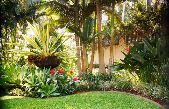 Outdoor Landscape Tropical  Luxury tropical garden
