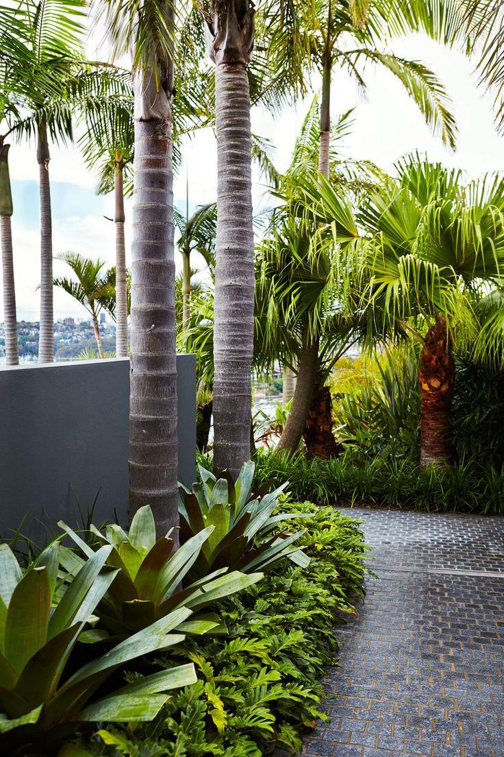 Outdoor Landscape Tropical  470 best tropical landscaping ideas images on Pinterest