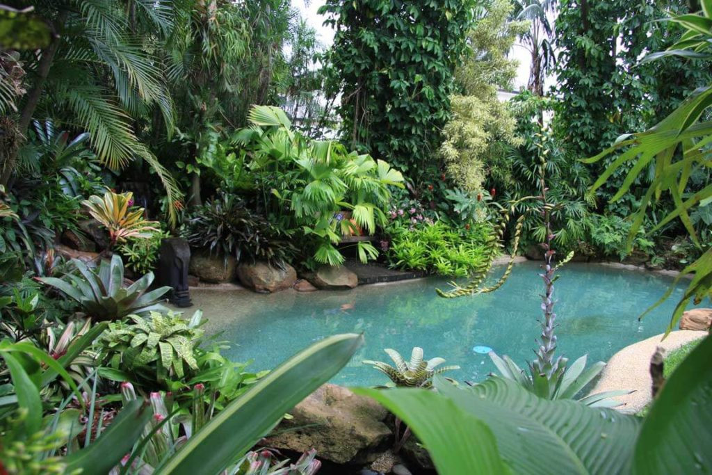 Outdoor Landscape Tropical  Create a Tropical Paradise in Your Backyard