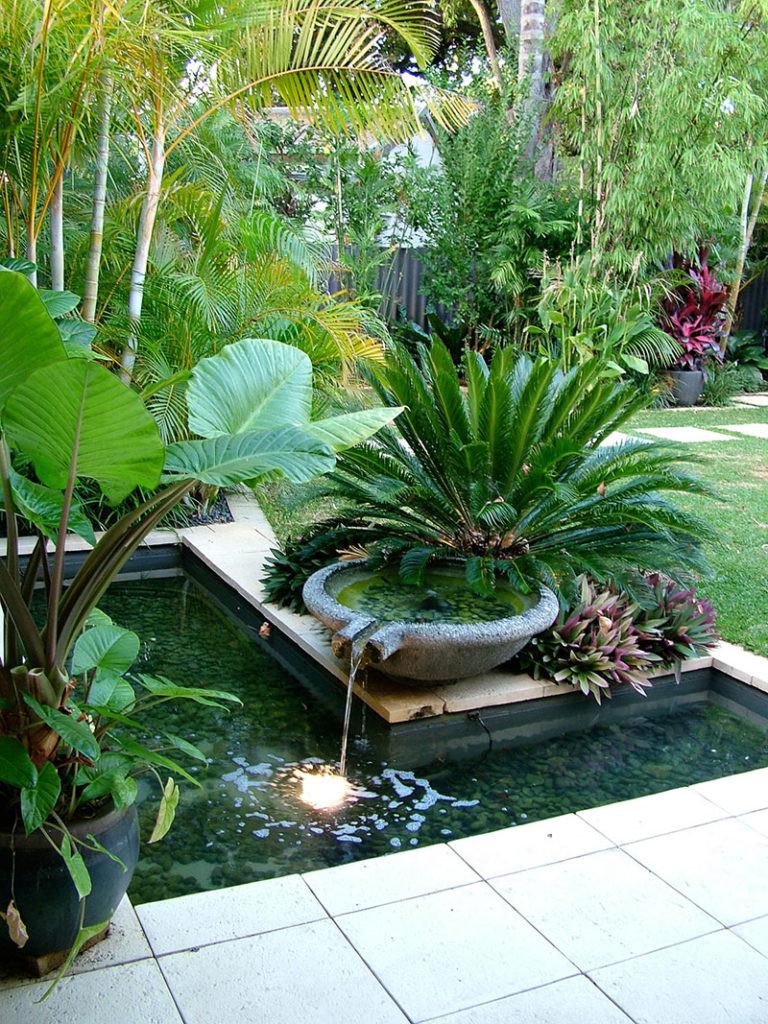 Outdoor Landscape Tropical  Nedlands Tropical Garden Cultivart Landscape Design