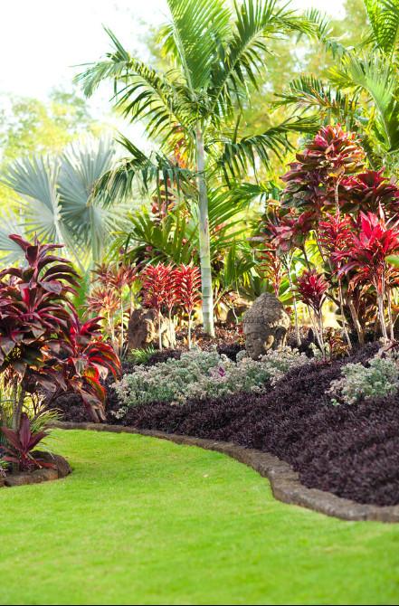 Outdoor Landscape Tropical  25 Best Tropical Garden Design Ideas Home and Gardens