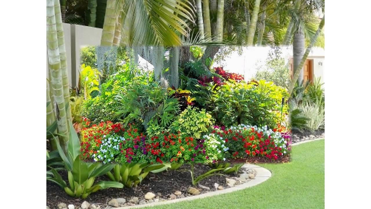 Outdoor Landscape Tropical  Small tropical garden ideas