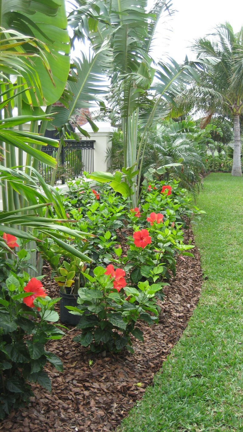 Outdoor Landscape Tropical  25 Tropical Outdoor Design Ideas Decoration Love
