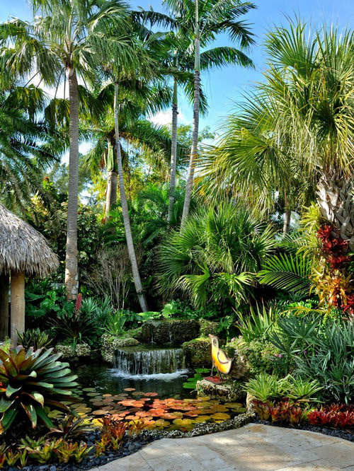 Outdoor Landscape Tropical  Tropical Garden Home Design Ideas Remodel and Decor