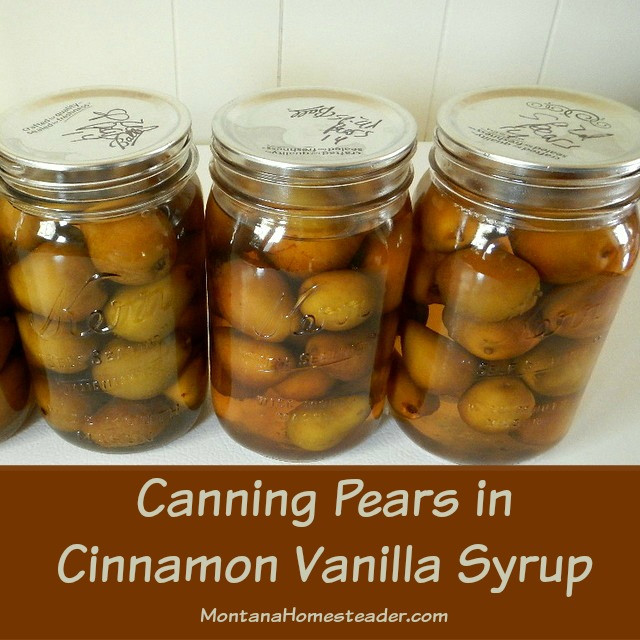 Pear Recipes For Canning  Canning Pears in Cinnamon Vanilla Syrup