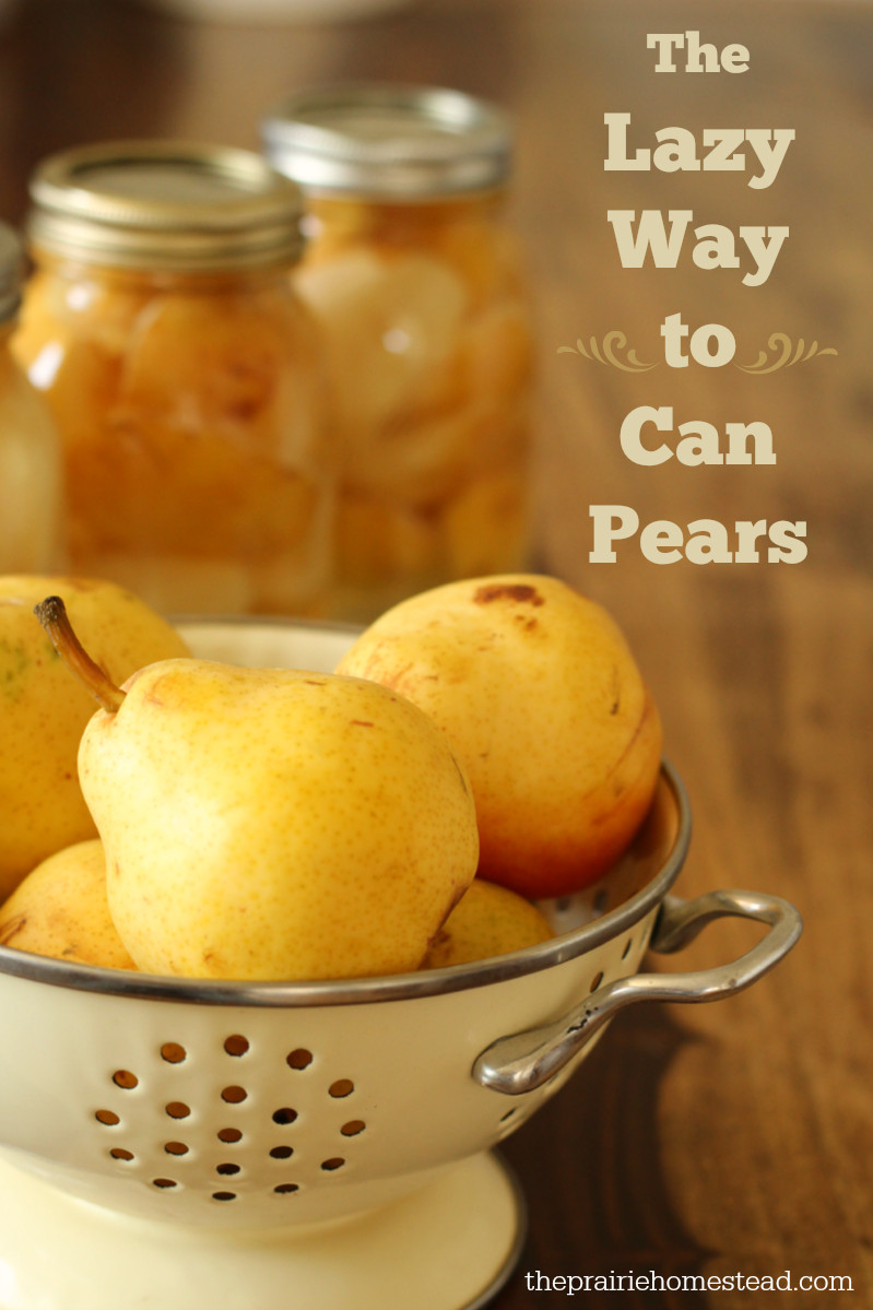 Pear Recipes For Canning  How to Can Pears Without Sugar Recipe