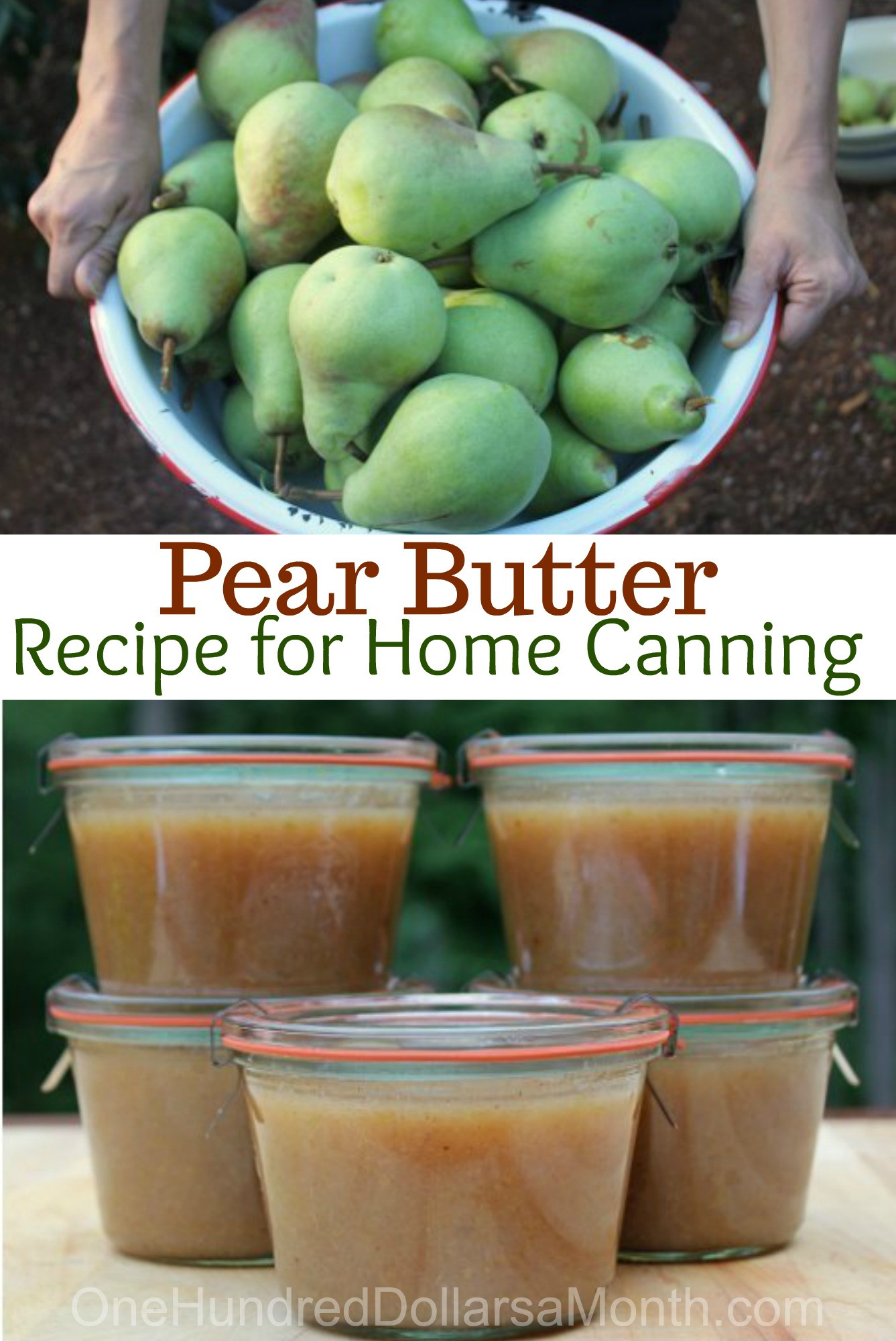 Pear Recipes For Canning  Pear Butter Recipe Canning 101 e Hundred Dollars a Month