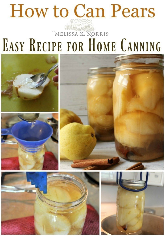Pear Recipes For Canning  How to can pears spiced pear canning recipe