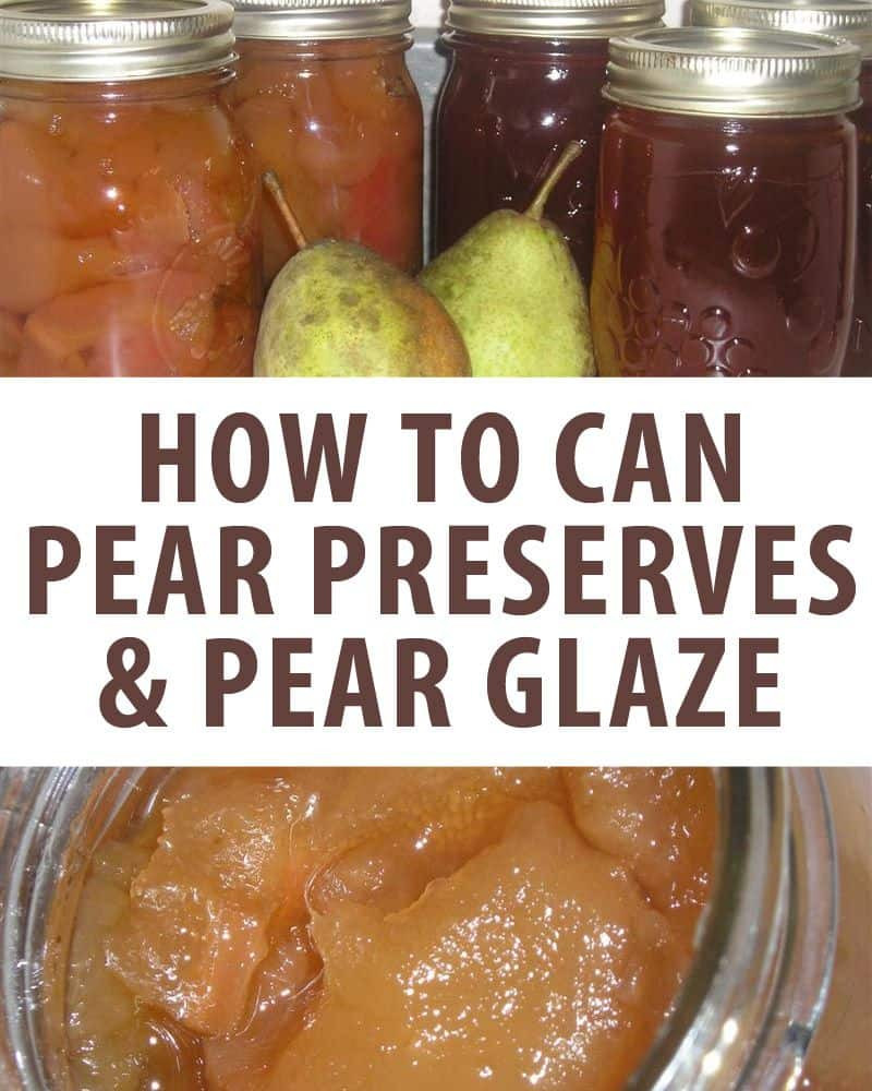 Pear Recipes For Canning  The Absolute BEST Recipe For Canning Pear Preserves