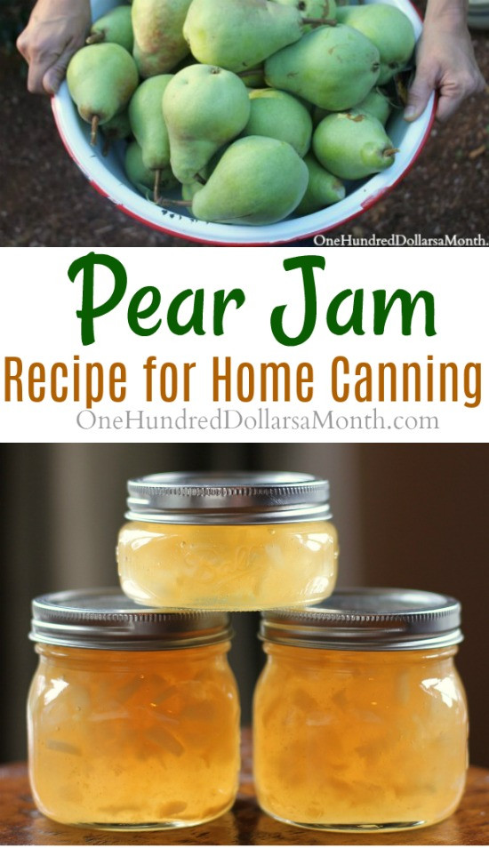 Pear Recipes For Canning  Canning 101 How to Make Pear Jam e Hundred Dollars a