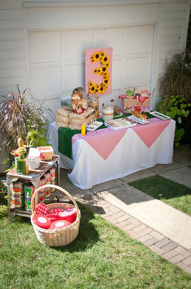 Picnic Birthday Party Ideas  132 best images about Picnic Birthday Party on Pinterest