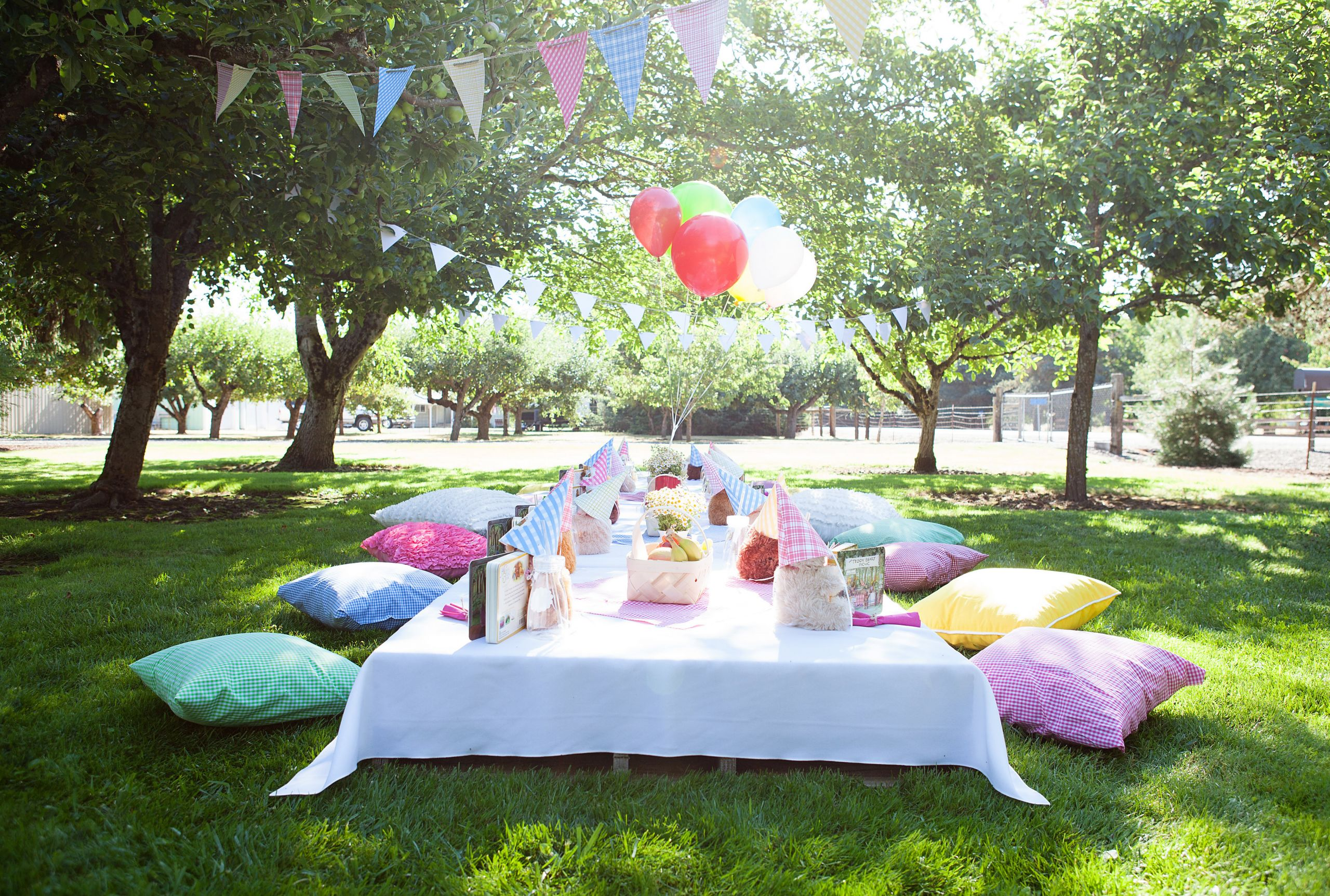 Picnic Birthday Party Ideas  Teddy Bear Picnic Birthday Party
