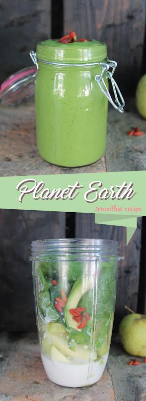 Planet Smoothie Recipes  Three Healthy Smoothies From Fit Girl s Diary All