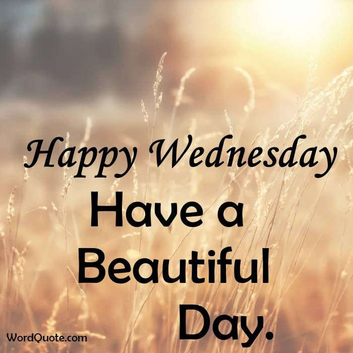 Positive Wednesday Quotes  Happy Wednesday Quotes And Word Quote
