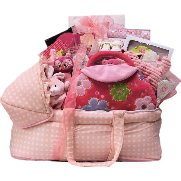 Top Baby Girl Gifts  Shop Great Arrivals Best Wishes Baby Girl Gift Basket
