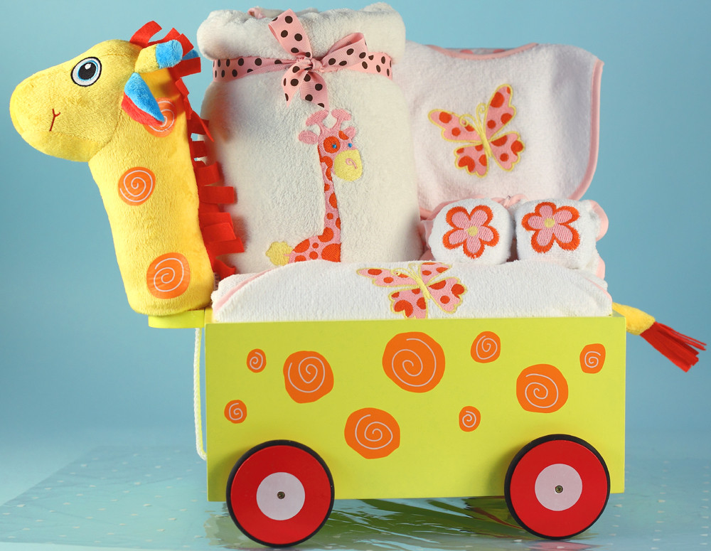 Top Baby Girl Gifts  Top 5 Baby Girl Gifts News from Silly Phillie