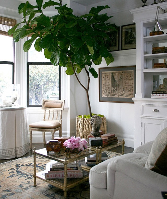 White Walls Living Room  5 Ways To Warm Up White Walls Emily A Clark