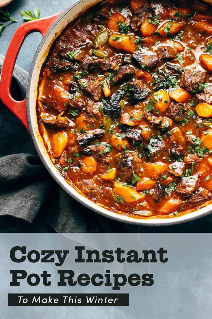 Winter Instant Pot Recipes  21 Easy Instant Pot Recipes To Make This Winter